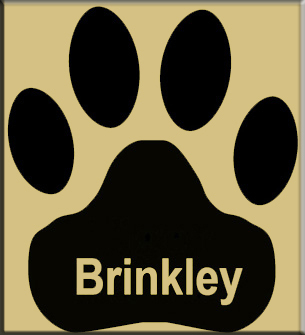 Brinkley Public School Parental Involvement Survey